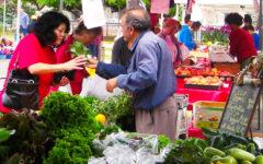 LEUCADIA: Sunday market touts family-friendly atmosphere