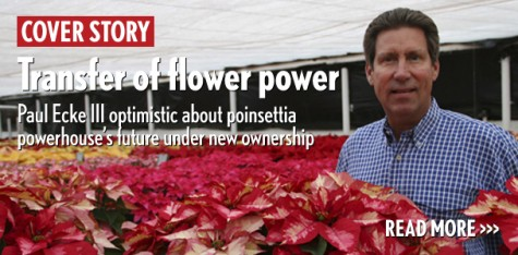 Transfer of flower power: Paul Ecke III optimistic about poinsettia powerhouse's future under new ownership