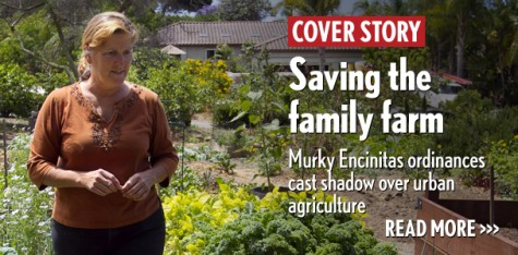 Saving the family farm: Murky Encinitas ordinances cast shadow over urban agriculture