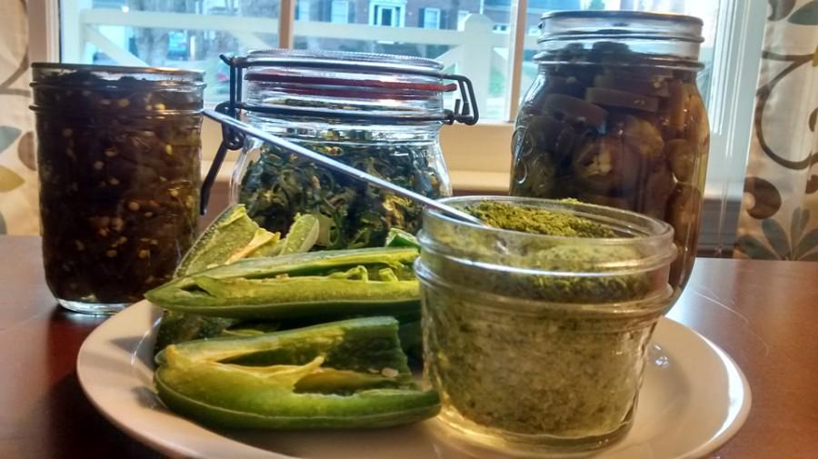 You can preserve and use jalapeno peppers in several ways, from dried and powdered to candied. (Photo by Laura Woolfrey-Macklem)
