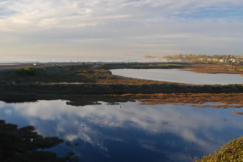 The San Elijo Lagoon is pictured in January looking north from the gateway of former settling ponds. (Courtesy photo by Janie DeCelles)