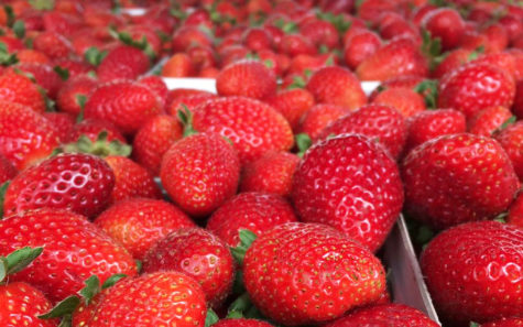 The Carlsbad Farmers Market offers fresh local strawberries. (Photo courtesy of Carlsbad Farmers Market)