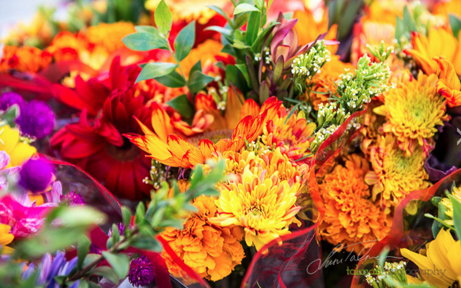 The Rancho Santa Fe Farmers Market offers fresh-cut flowers in addition to artisan foods and local produce. (Photo by Susie Talman, courtest of Rancho Santa Fe Farmers Market)