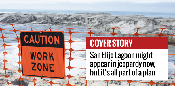 Orange netting, pictured March 9, stretches down San Elijo Lagoon in Cardiff to keep beachgoers safe during construction. (Photo by Cam Buker)