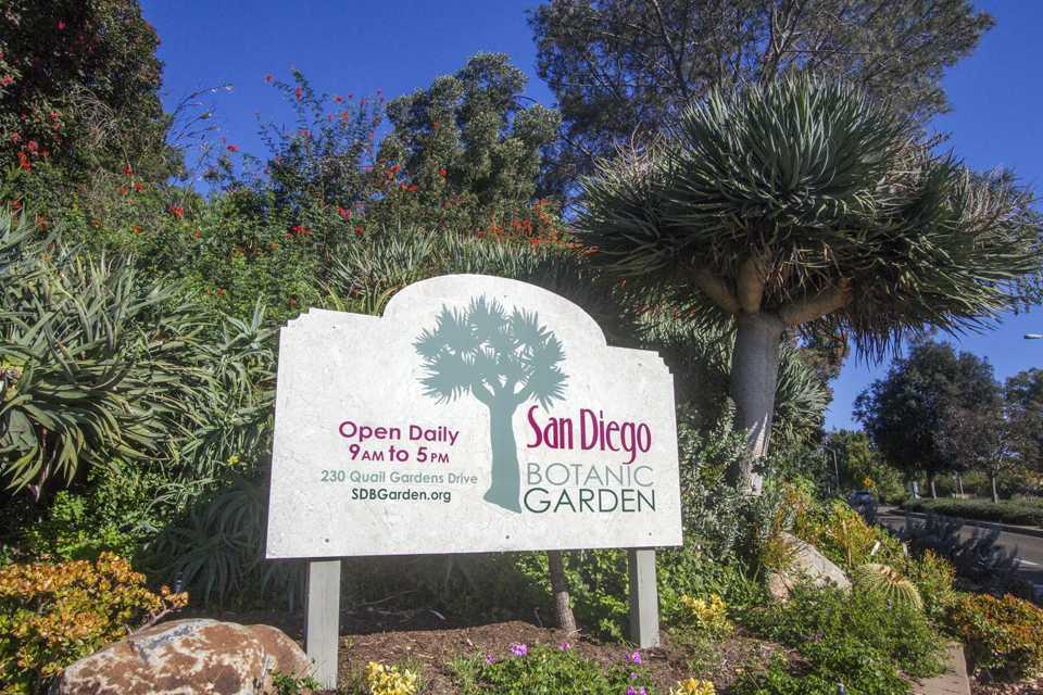 The San Diego Botanic Garden is located in Encinitas. (Botanic Garden photo by Rachel Cobb)