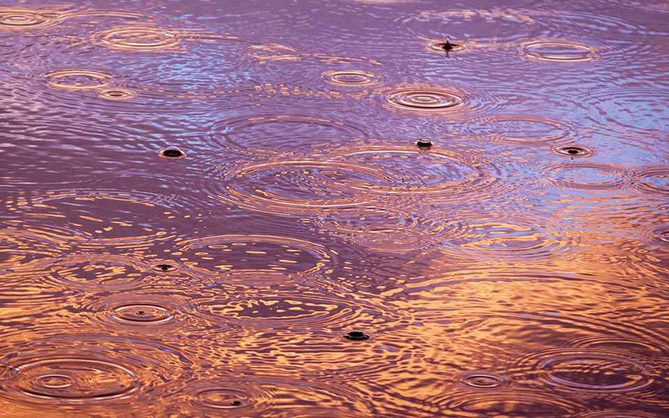Rain. (Pete Nowicki, Unsplash)
