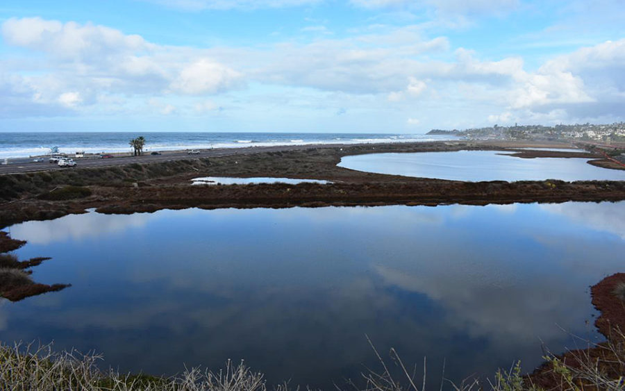 The Harbaugh Seaside Trails property provides unobstructed views of the San Elijo Lagoon and coastline. (Photo courtesy of the San Elijo Lagoon Conservancy)