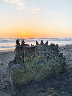 The letters of the Nature Collective name were carved out by a sandcastle sculptor during the official name unveiling for the now-former San Elijo Lagoon Conservancy. The name change official was made official May 17 at Seaside Beach party in Cardiff. (Nature Collective photo)
