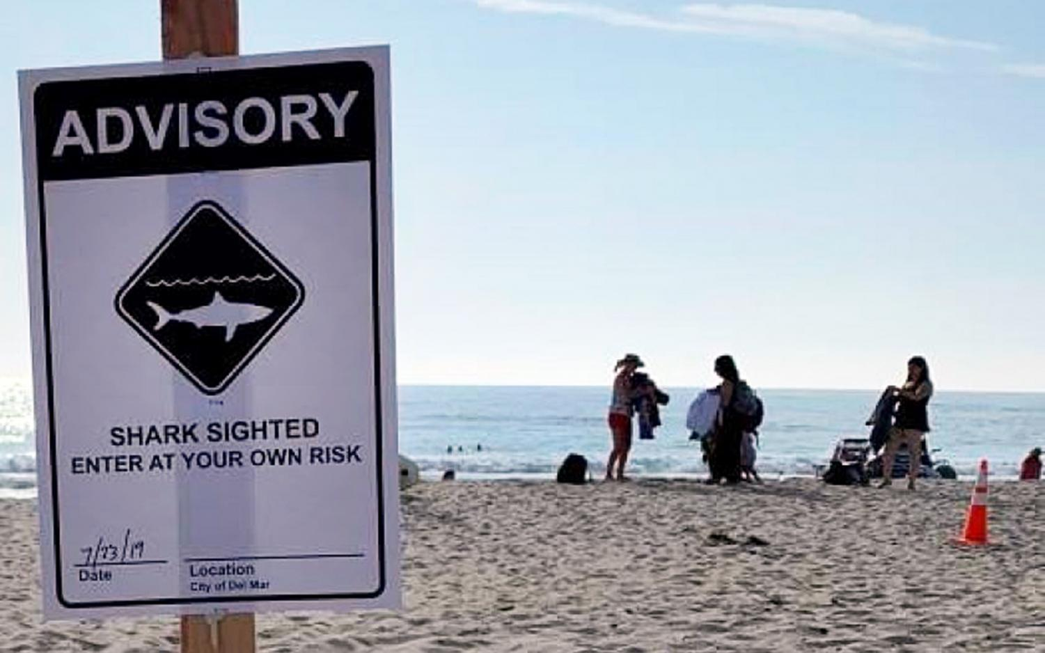 The city of Del Mar posted a shark advisory at its beaches July 23. Encinitas followed with its own advisory July 24. (Del Mar city photo)