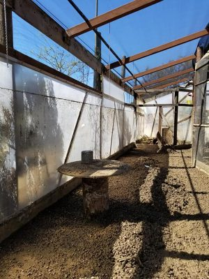 The water line from flooding can be seen in the Sunshine Gardens houseplant area on Saturday, April 11, in Encinitas. (Sunshine Gardens photo)