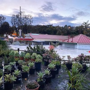 Cuppa Juice sits under water after flooding caused by heavy rain on Friday, April 10. The shop is located on the Encinitas property of Sunshine Gardens, which also suffered damage. (Cuppa Juice photo)