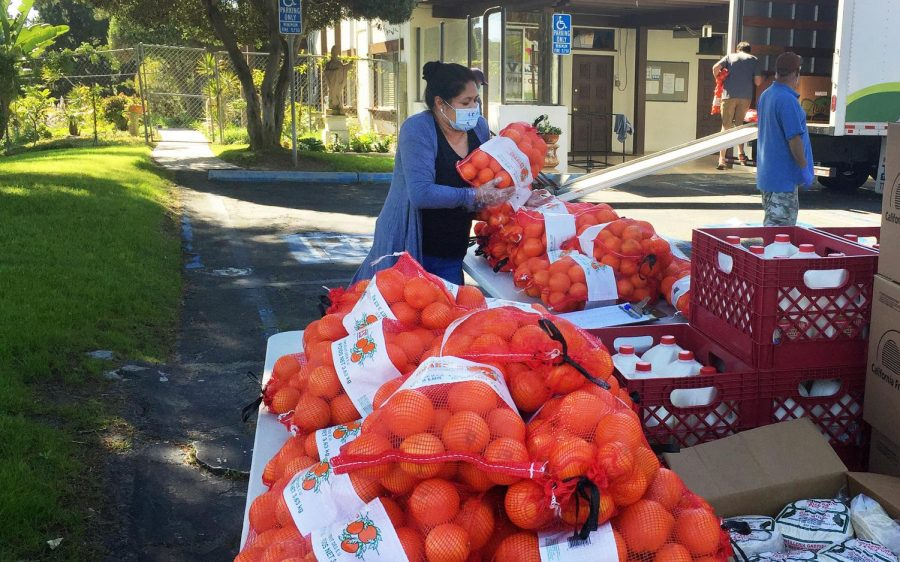 A volunteer stacks oranges for distribution to families Wednesday, April 15, as part of an effort by La Colonia de Eden Gardens in Solana Beach. The effort was put together to help families in need during the COVID-19 coronavirus crisis. (Courtesy photo)