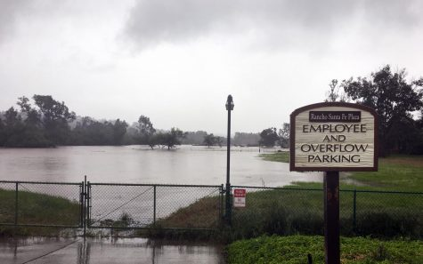 A swollen Escondido Creek flows west through Olivenhain toward San Elijo Lagoon in Cardiff as nonstop rain flooded Encinitas and the region Friday afternoon, April 10. (Photo by Roman S. Koenig)