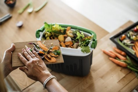 EDCO and Encinitas have introduced the use of food waste bins similar to the one pictured as part of an organics recycling program. (Photo by Svetikd, iStock Getty Images)