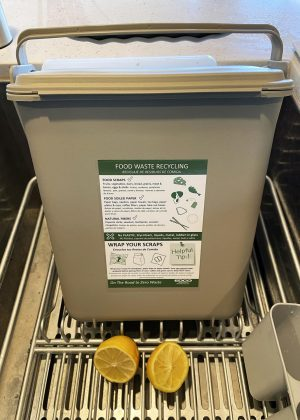 An example of the EDCO food waste bins distributed to households in Encinitas. (North Coast Current photo)