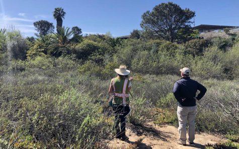 San Diego Botanic Garden representatives look over Ocean Knoll Canyon, located below Ocean Knoll Elementary School in Encinitas, earlier this year. (San Diego Botanic Garden photo)
